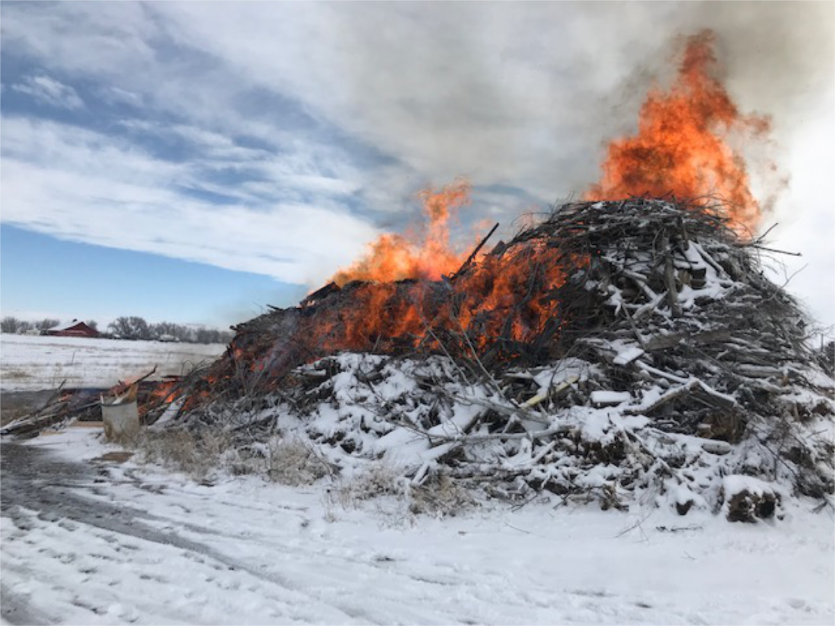 Controlled Brush Pile Burn